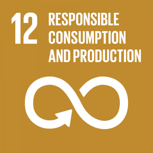 Theglobalgoals Icons Color Goal 12